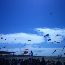 More kites in a cold year.